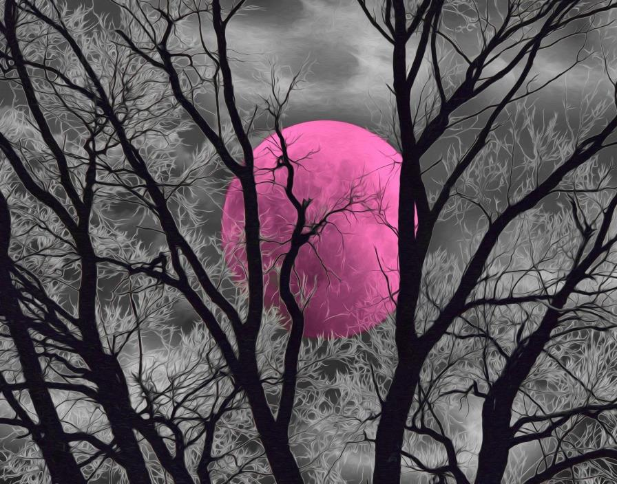Black White Pink Wall Art, Tree Moon Decor, Pink Gray Bedroom Wall Picture