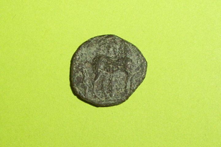 Ancient GREEK COIN of ZEUGITANA CARTHAGE 350 BC-250BC horse palm tree tanit rare