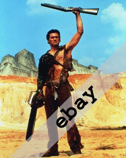 Bruce Campbell as Ash, Hero from the sky Evil Dead8X10 PHOTO #2019