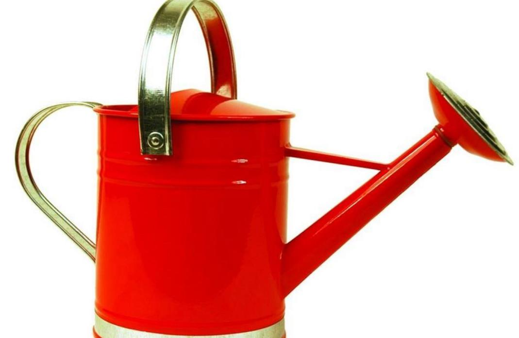 Arcadia Garden Products Basic 1 Gallon Bright Red Metal Decorative Watering Can