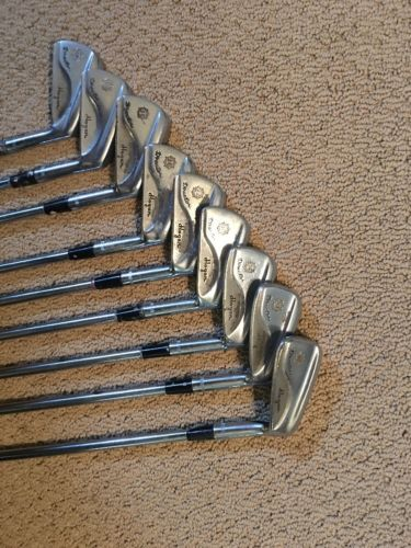 Ben Hogan Director Irons 2-PW Set