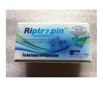 erwghdhfn ( quality somatropin HGH, Steroids, pain killers, for sale