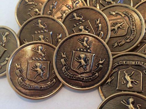 Large Lot Vintage Spectemur Agendo Buttons Lions Crest 30 Buttons 38.1mm  #16