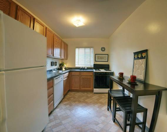 Medical Professional looking for roomate for Two BR apartment (Arlington) $1600