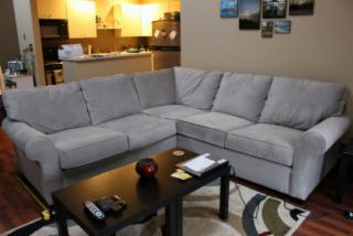 Levin Sectional Couch