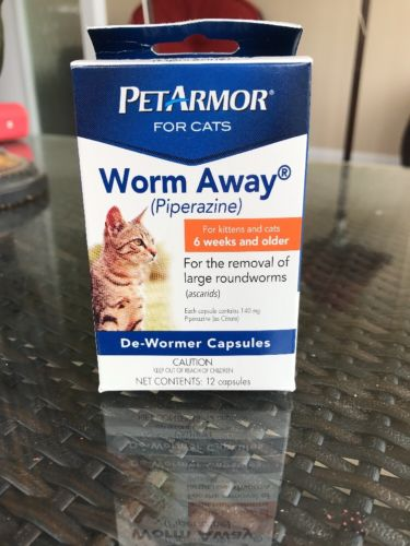 Pet Armor For Cats