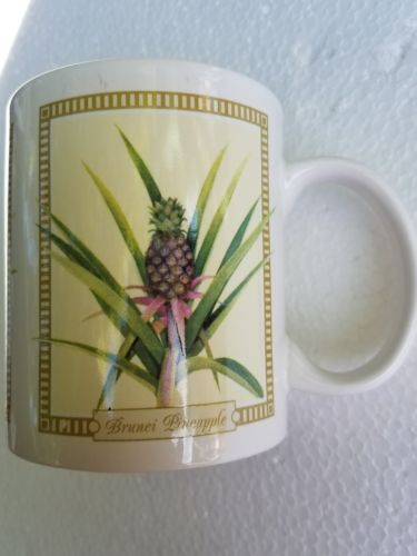 THE STORE HAWAII  COFFEE CUP HILO HATTER 2005 ISLAND TROPICAL PINEAPPLE