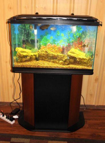 29 Gallon Fish Tank Aquarium Complete