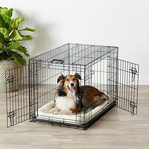 Basics Folding Metal Dog Crate