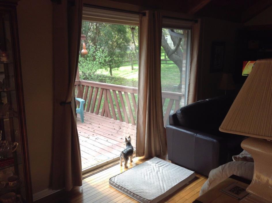 Sliding glass door doggie door for sale classifieds for Sliding patio doors for sale