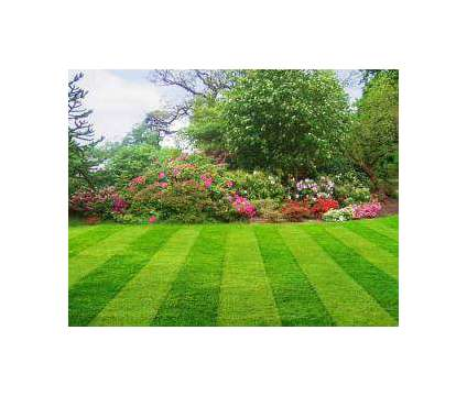 Landscaping and yard work!!! Free quotes