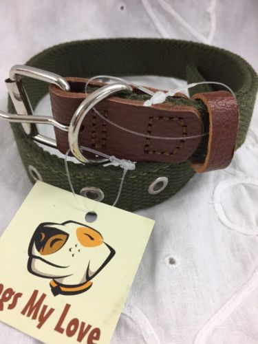 Dogs My Love Dog Collar Green Cotton Webbing Brown Leather 15