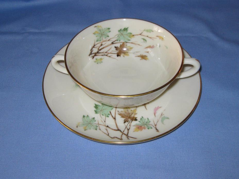 Rare Lenox Westwind Soup / Cream Bowl With Under Plate 3 Available Combined Ship