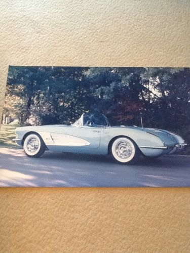 Dream Cruise Fans Corvette Photograph.  20 x 30 inches