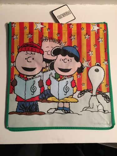 PEANUTS CHARLIE BROWN SINGING BIRTHDAY PARTY TOTE GIFT Bag  FREE SHIPPING