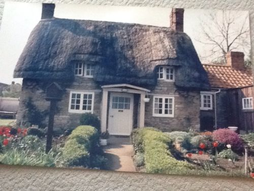 Irish Thatched Roof Cottage Photo  20 X 30 inches