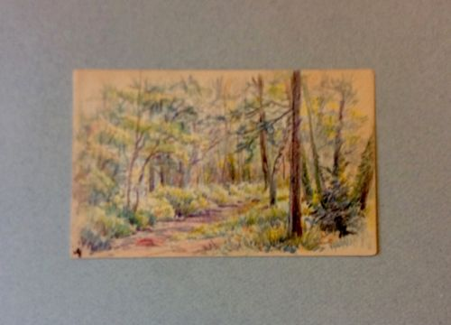 Coloured PencilParis France Artist Alfred Hilpert(1875-1933) 5 3/4