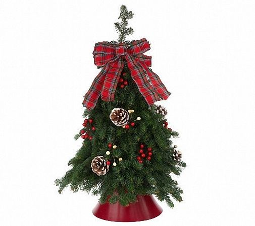 4 oz Candle Scent Oil-CHRISTMAS PINE