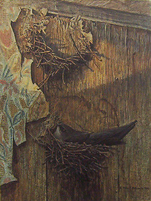 Robert Bateman Chimney Swift On Nest Artist's Proof