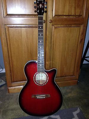 Ibanez AEG-10 Guitar
