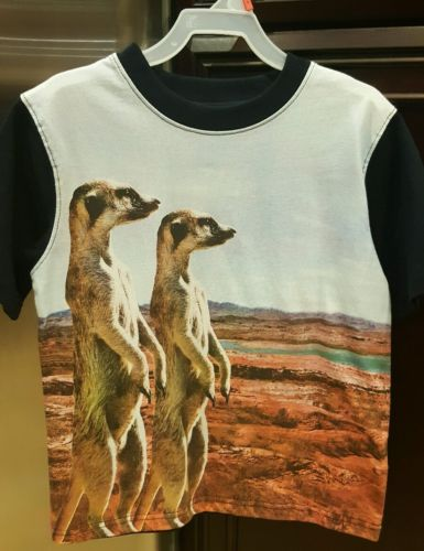 BOYS Faded Glory T-SHIRT size 5: PHOTO TEE: NWT: MEERKATS STANDING: CUTE!