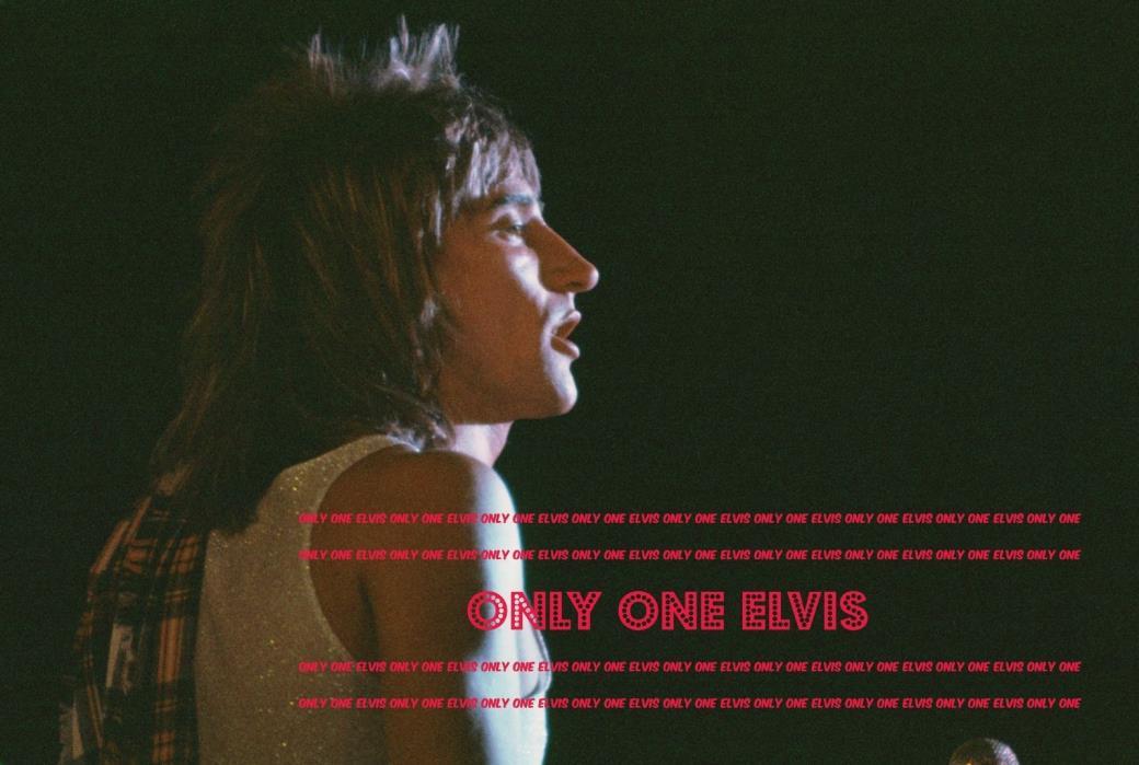 1970s RARE Photo SUPERSTAR Singer ROD STEWART Live in CONCERT Unseen  01