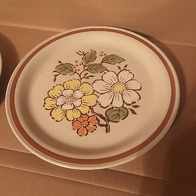 Set of 2 Imperial Stoneware Plates Countryside by WM Dalton - H-1001