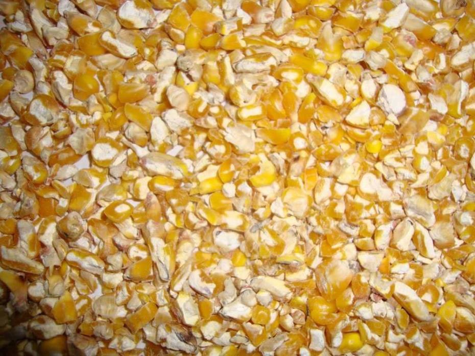 5 lb Coarse Cracked Corn Chicken Deer Bird Feed