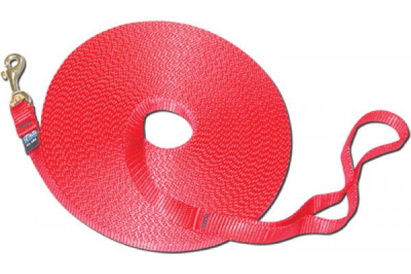 Cetacea 50ft Leash-Red