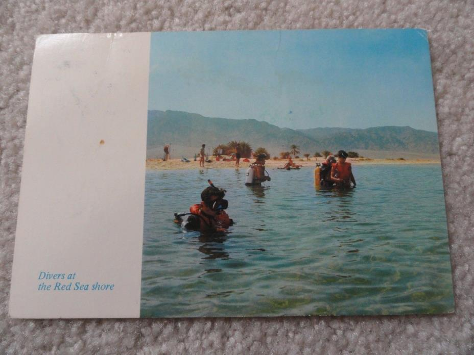 Divers at the Red Sea Shore      Postcard