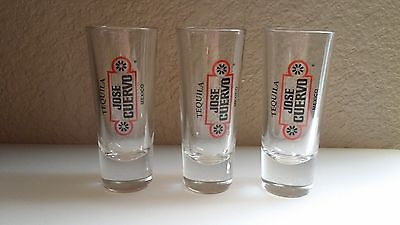 3 Vintage Jose Cuervo Tequila Shot Glass (s) from Mexico