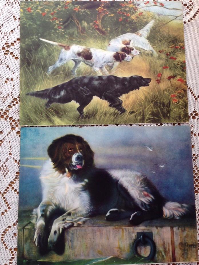 2 Vintage Lithograph Color Prints