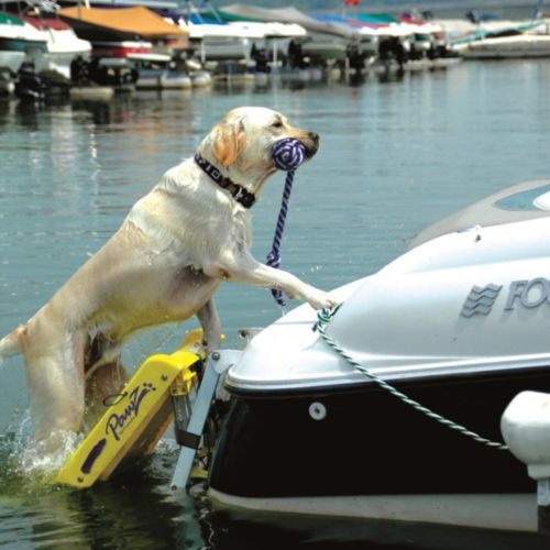 Pawz Pet Products Dog Boat Ladder Yellow 64