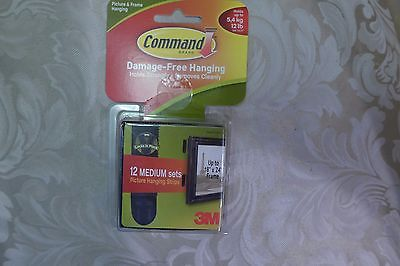 Command Picture Hanging Strips With Adhesive No Surface Damage holds 12 lb