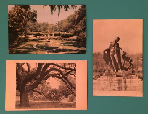 Vintage Postcard Lot Of 3 Brookgreen Gardens South Carolina