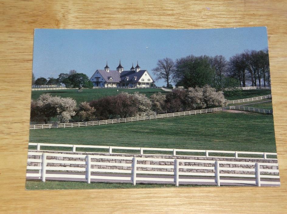 BLUEGRASS HORSE FARM NEAR KEENELAND FAYETTE COUNTY KENTUCKY POSTCARD