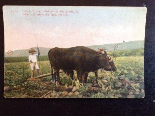 Indian Cultivating The Land Postcard Mexico 1940s?