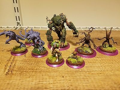 Zoraida Crew Painted - Malifaux Neverborn - The Swamp Hag - Waldgeist