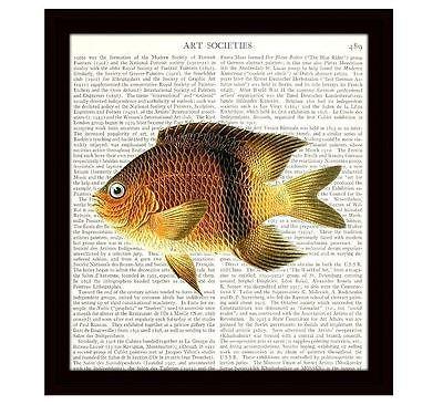 Nautical 8 x 10 Dictionary Art Print Perch Ocean Life Fish Vintage Home Decor