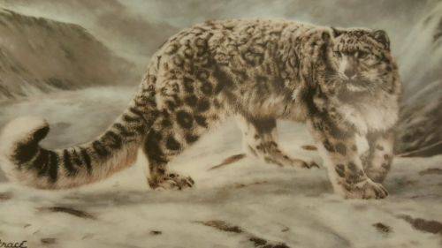 SNOW LEOPARD 1991.Collector's Plate. Great present !!