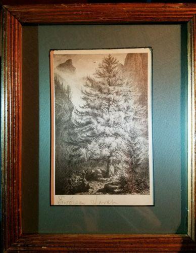 Vintage etching signed