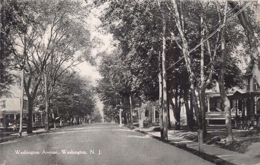 WASHINGTON NJ~TREE LINED WASHINGTON AVENUE~MILLAR & COMPANY PUBL POSTCARD 1914
