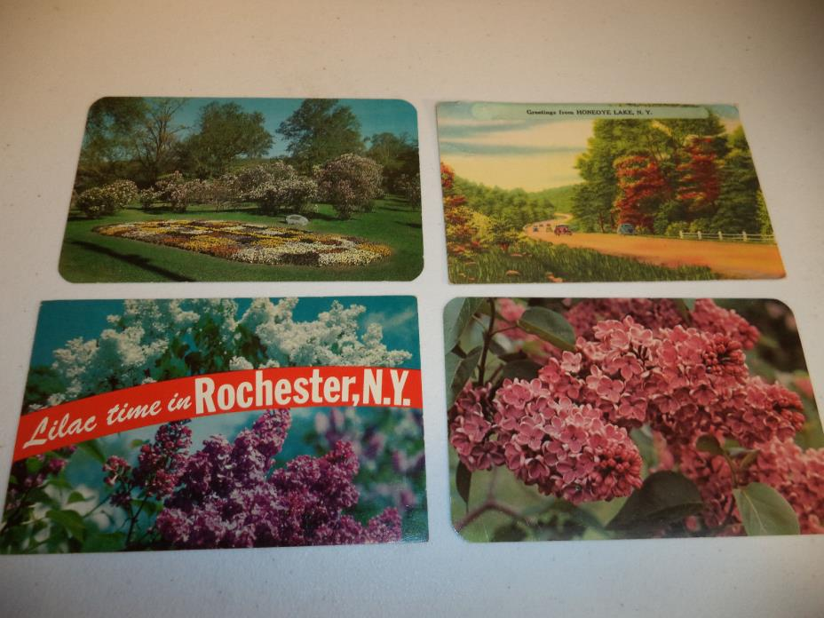 Dexter Press Lot of 4 Old Postcards of New York!!