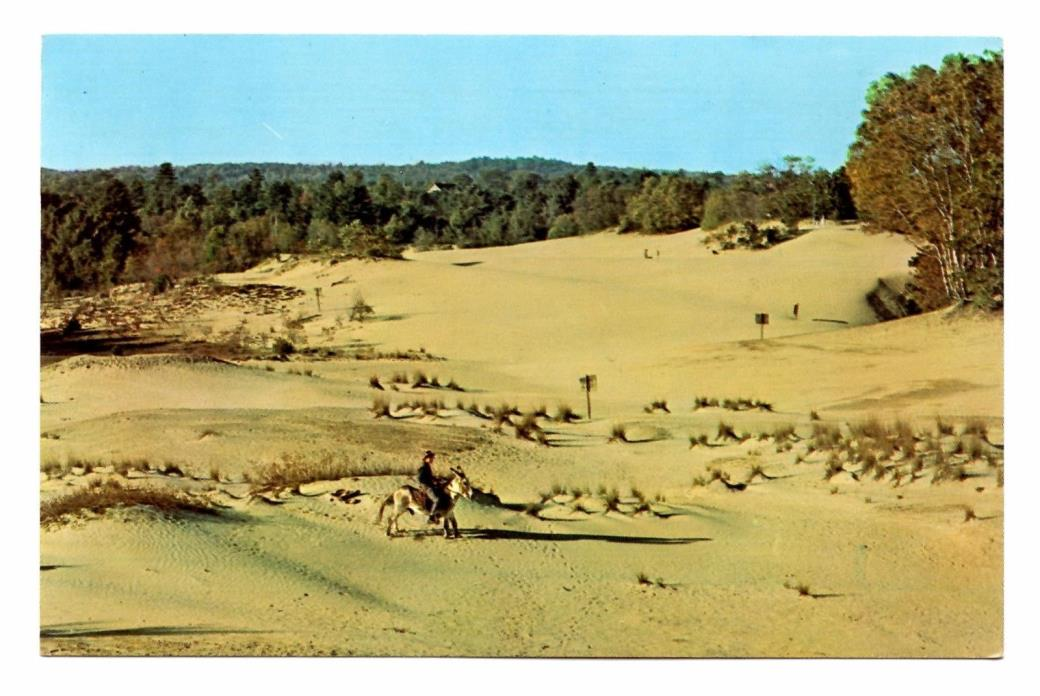 Desert of Maine Postcard Freeport Off US 1 and Interstate 95 Vintage Unposted