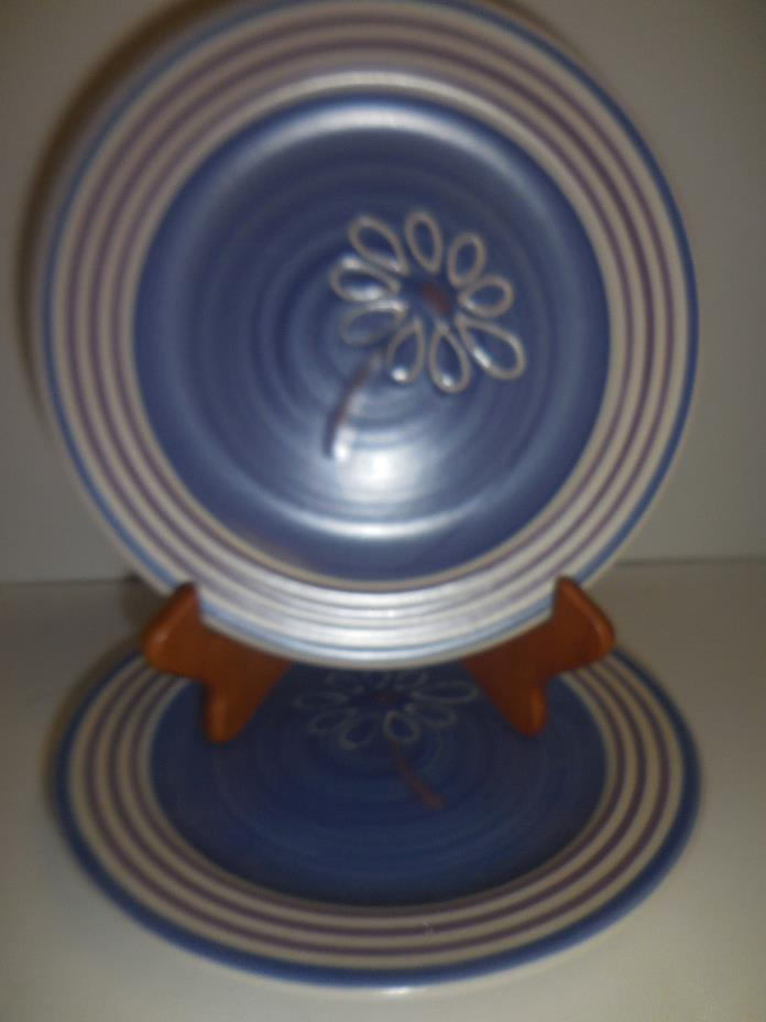 Pfaltzgraff BAJA blue salad/dessert plates lot of 2 Mexico flower daisy blue EUC