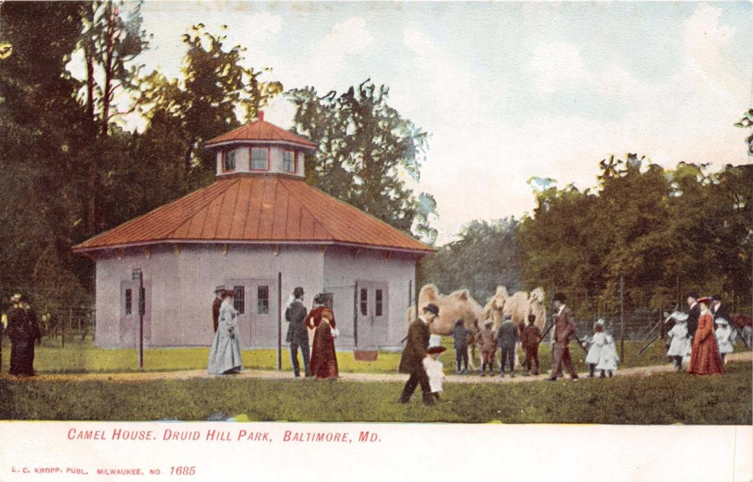 BALTIMORE MARYLAND CAMEL HOUSE~DRUID HILL PARK~KROPP PUBL #1685 POSTCARD 1900s