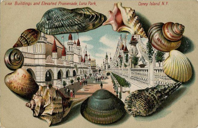 Old Unused Shell Border Postcard Elevated Promenade Luna Park Coney Island NY