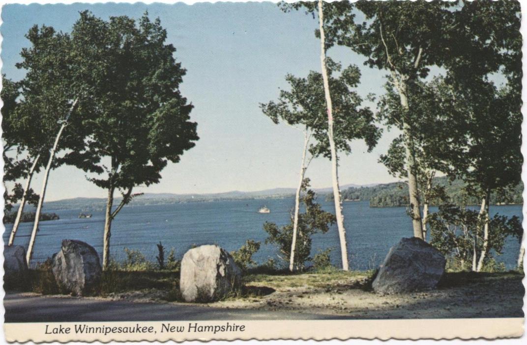 Lake Winnipesaukee New Hampshire Vintage Postcard C827