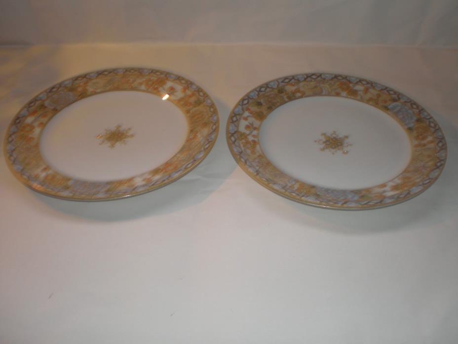 2 BEAUTIFUL HAND-PAINTED RAISED GOLD TRIM NIPPON PLATES