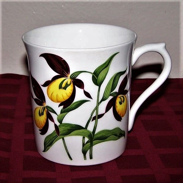 Queens Rosina China Rare Kentucky Yellow Lady Slipper Floral Mug